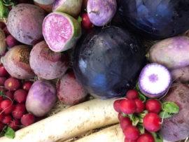 ha50-horecava-vergeten groenten